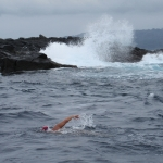 Gale rock island swim, Africa June 2014